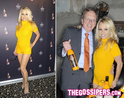pamela andaloe2 Pamela Anderson dimentica i pantaloni a Berlino