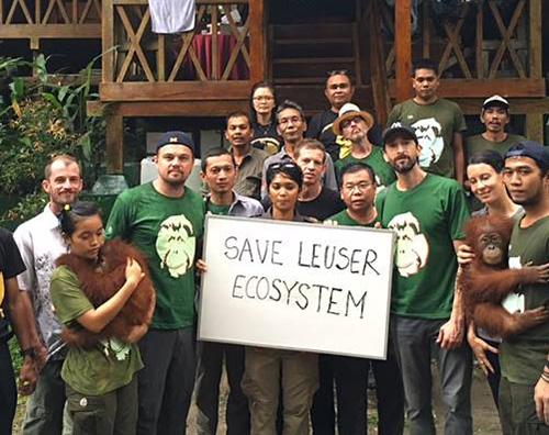 Leonardo DiCaprio2 Leonardo DiCaprio in Indonesia per salvare l orango di Sumatra