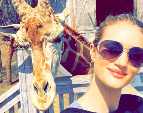 Rosie Huntington Whiteley Rosie Huntington  Whiteley, selfie con la giraffa