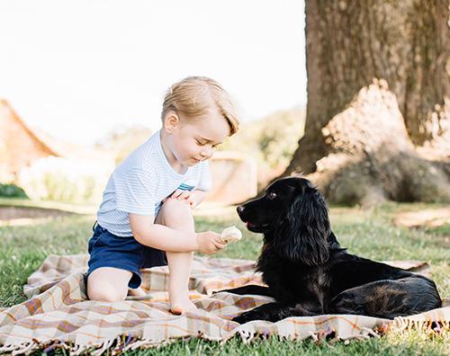 Il Principe George festeggia i suoi 3 anni