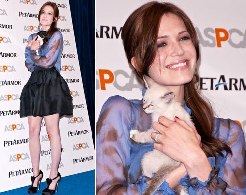mandymoore Mandy Moore porta un gattino sul red carpet