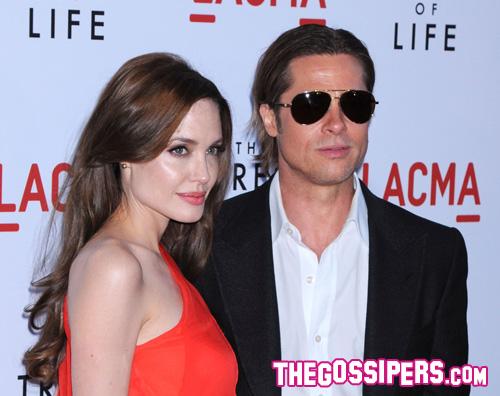 brad pitt angelina jolie Brad Pitt è bisessuale secondo Star