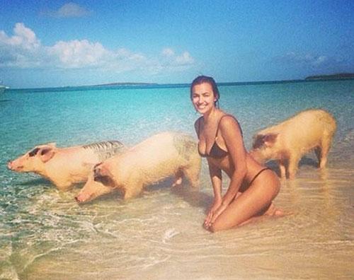 irinia mailai Irina Shayk nuota con i maialini