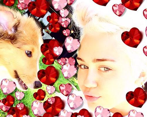 miley26 Miley Cyrus adotta un nuovo cucciolo