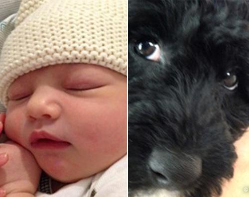 Ashton Ecco il nome della figlia di Mila Kunis e Ashton Kutcher