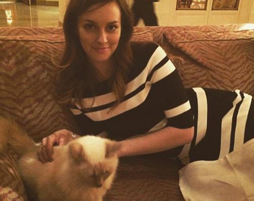 leighton meester Leighton Meester si rilassa con un gattino