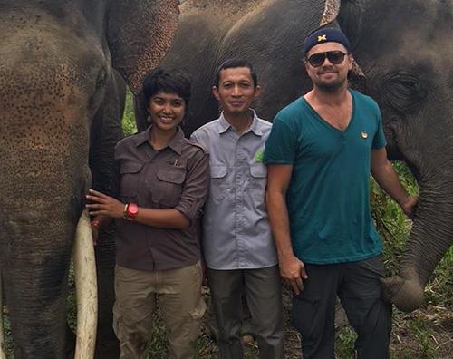 Leonardo DiCaprio 2 Leonardo DiCaprio in Indonesia per salvare l orango di Sumatra