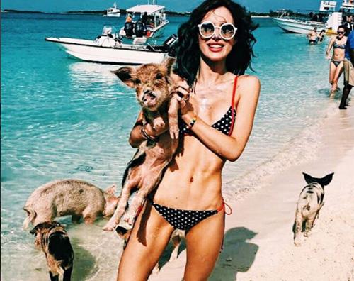 Bella Thorne Bella Thorne nuota con i maiali alle Bahamas