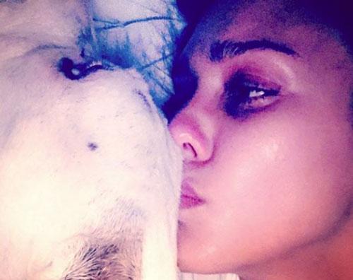 Jessica Alba Jessica Alba piange la morte del suo cane