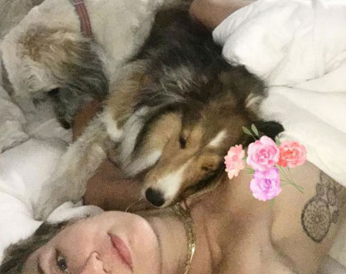 Miley Miley Cyrus a letto con i suoi cani