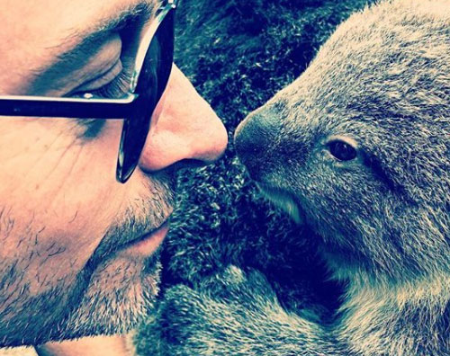 Hugh Jackman Hugh Jackman faccia a faccia con un koala