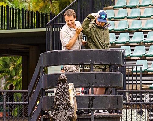 Ed Sheeran Ed Sheraan gioca con un coccodrillo in Australia
