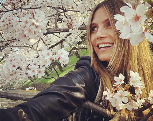 Heidi Klum 2 1 Anche Heidi Klum sotto i ciliegi giapponesi