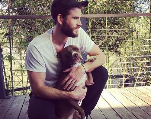 Liam Hemsworth Liam Hemsworth coccola il suo cane su Instagram