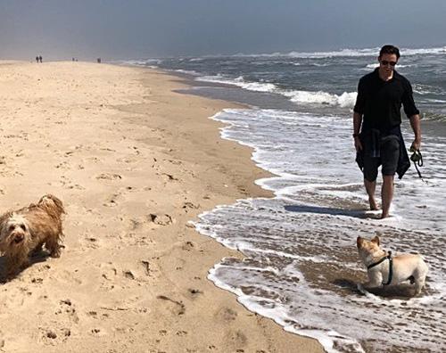 Hugh Jackman 1 Hugh Jackman, relax al mare con i suoi cani