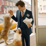 Harry Styles 2 150x150 Harry Styles coccola un gallo nella campagna pubblicitaria di Gucci