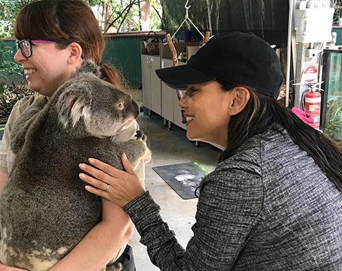 Eva Longotia Eva Longoria coccola un koala in Australia
