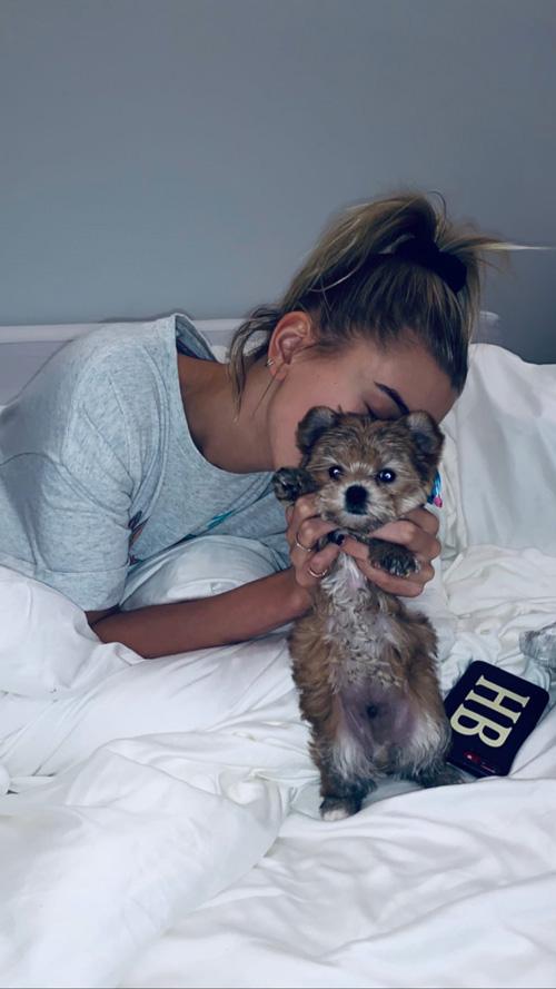 Hailey Baldwin 1 Justin Bieber e Hailey Baldwin hanno adottato un cucciolo