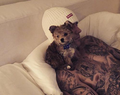 Justin Bieber Justin Bieber e Hailey Baldwin hanno adottato un cucciolo
