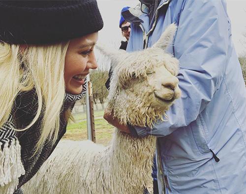 Hilary Duff Hilary Duff ha ricevuto un alpaca per San Valentino