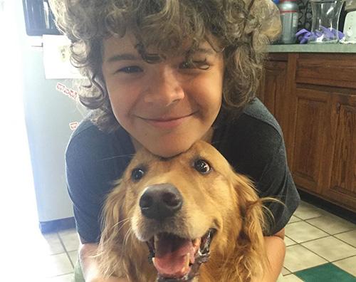 gaetan matarazzo Gaten Matarazzo dice addio al suo cane