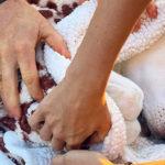 Justin Jennifer 3 150x150 Justin Theroux piange la morte della sua cagnolina