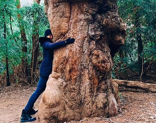 nicole kidman 2 Nicole Kidman abbraccia un albero su Instagram