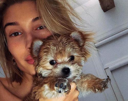 Hailey Baldwin Justin Bieber ha creato un account instagram per i suoi animali domestici