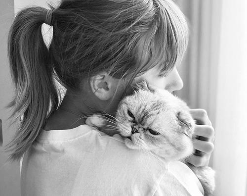 taylor Swift Taylor Swift celebra la giornata del gatto