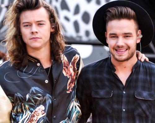 liam harry Liam Payne: Se incontrassi Harry non saprei cosa dirgli