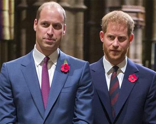 william harry William e Harry non sono in buoni rapporti