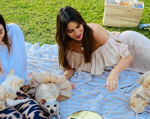 sofia vergara Sofia Vergara festeggia il compleanno dei suoi cani