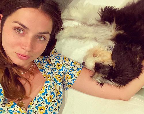 ana de armas Ana de Armas, selfie con cane su IG