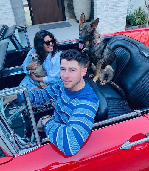 123260076 185536236474026 3929325175897119275 n Priyanka e Nick: foto di famiglia su Instagram