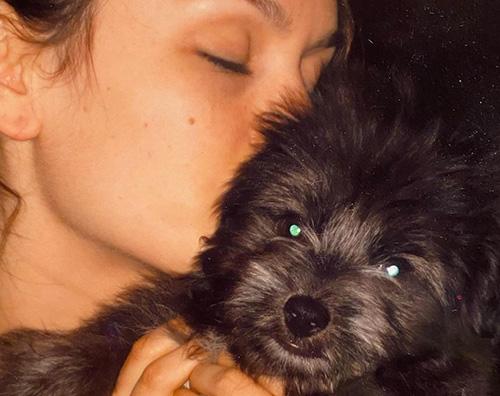 rachel bilson Rachel Bilson dice addio al suo cagnolino