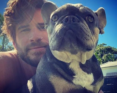 liam hemsworth 1 Liam Hemsworth, selfie su Instagram