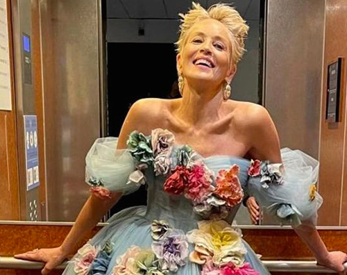sharon stone Sharon Stone, una Cenerentola a Cannes